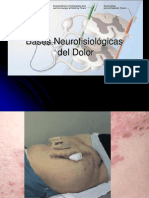 Neuro Fisio Log i Adel Dolor