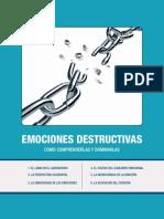 resumenlibro_emociones_destructivas