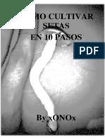 cultivo de setas psilocibes.pdf
