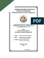 Tesis Doctoral_Nancy Soto Deza 2014