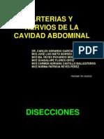arteriasynerviosdelacavidadabdominal-110609132859-phpapp01