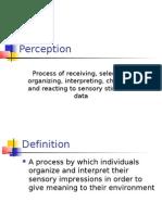 Perception 2007