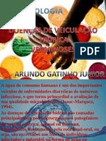 DOENÇAS DE VEICULAÇÃO HIDRICA.pptx