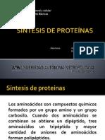 Síntesis de Proteínas
