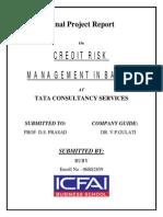 Credit Risk Management Tata Conceltancy