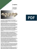Cinco Provas Da Evolução Das Espécies _ Mensageiro Sideral - Folha de S