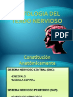 TNERVIOSO BUENO.pptx