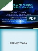 cirugia maxilo