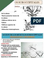 MUSCULOS cervicales