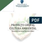 Entrega Final Cultura Ambiental