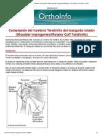 Compresión del hombro_ T...itis) -OrthoInfo - AAOS.pdf