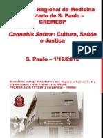 A Experiência Da Justiça Terapeutica Em São Paulo