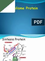 Anabolisme Protein