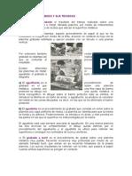 Historia Del Grabado y Sus Tecnicas