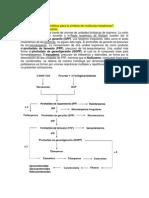 Actividades Farmacognosia - Copia