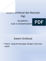 Sistem Orofacial Dan Resorpsi Gigi KEL 5. Fiks