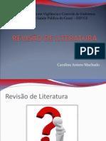 REVISÃO Monografia