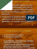 TULBURARILE GANDIRII