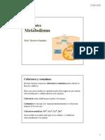 102393_MetabolismoIQ2014.pdf