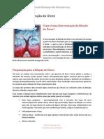 Conexão Com o Útero - Womb-Blessing-Introduction-portugues