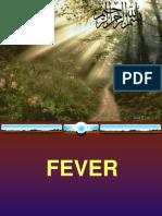 Slides of Fever 3