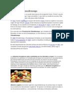 Historia de Chimaltenango