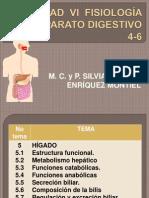 fisiologia del aparato digestivo7.pptx