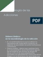 Neurobiolog a de Las Adiccione
