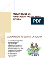 Mecanismos de Adaptación Aguda en La Altura
