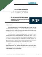 2 Estatus Actual Bacterias en Mexico Lourdes Rodriguez JR