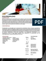 Ficha Tecnica de PP