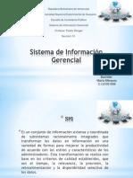 Sistema de Informacion Gerencial