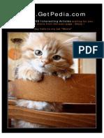 (E-Book Ielts) - Longman - Focus on Advanced English Grammar Practice (2000)
