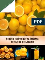 Controle Da Poluição Na Indústria de Sucos
