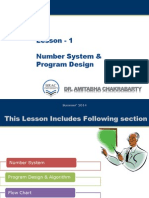 Number System & Program Design