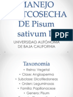 Manejo Postcosecha de Pisum Sativum l