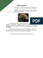 Espiral Logarítmica -curiosidades