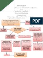 CIENCIAS DE LA SALUD Actividad 1.docx