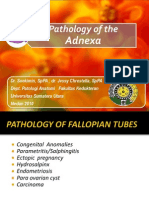Pathology of the Adnexa