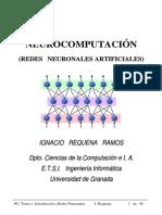 Neurocomputación (Redes Neuronales Artificiales)
