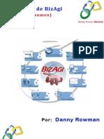 Manual De BizAgi