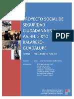 Proyecto de Seguridad Ciudadana Original