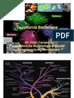 Taxonomia Bing 2013