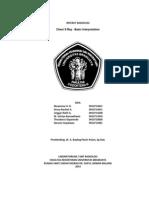 Referat Basic CXR