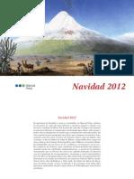 Catalogo Navidad 2012 Web