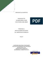 Transicion de Flujo Subcritico