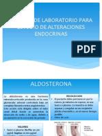 pruebas endocrinas