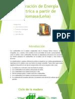 Generación de Energía Eléctrica a Partir de Biomasa(Leña