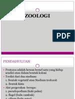 Rhizopoda