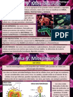 Tema 9 Micromundo